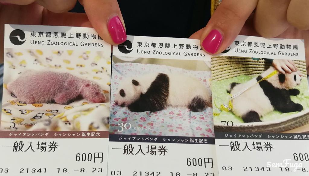 bilhetes do ueno zoo em tóquio com fotografias dos pandas de várias idades