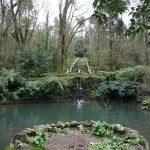 Fonte Fria, na rota do trilho da água na mata do bussaco