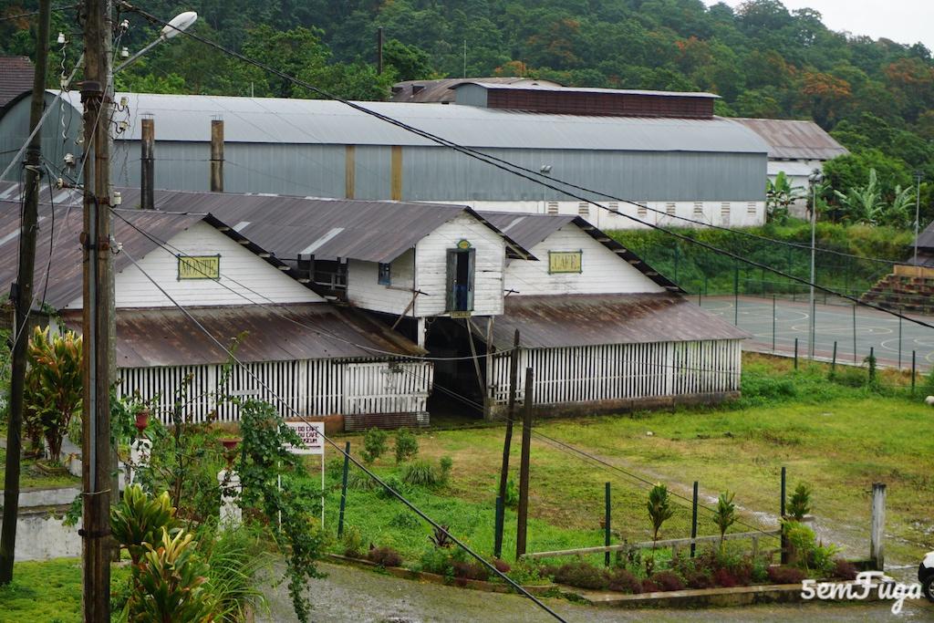 Pelo interior de São Tomé