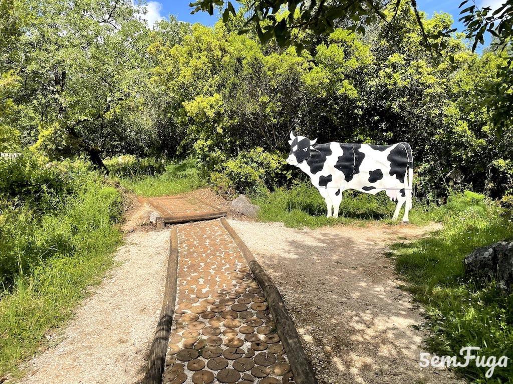representação de vaca no percurso