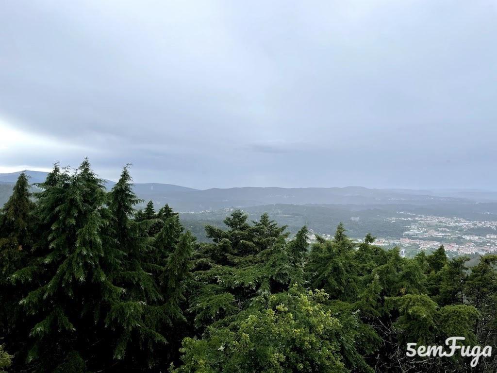 árvores no exterior do santuário do monte alto